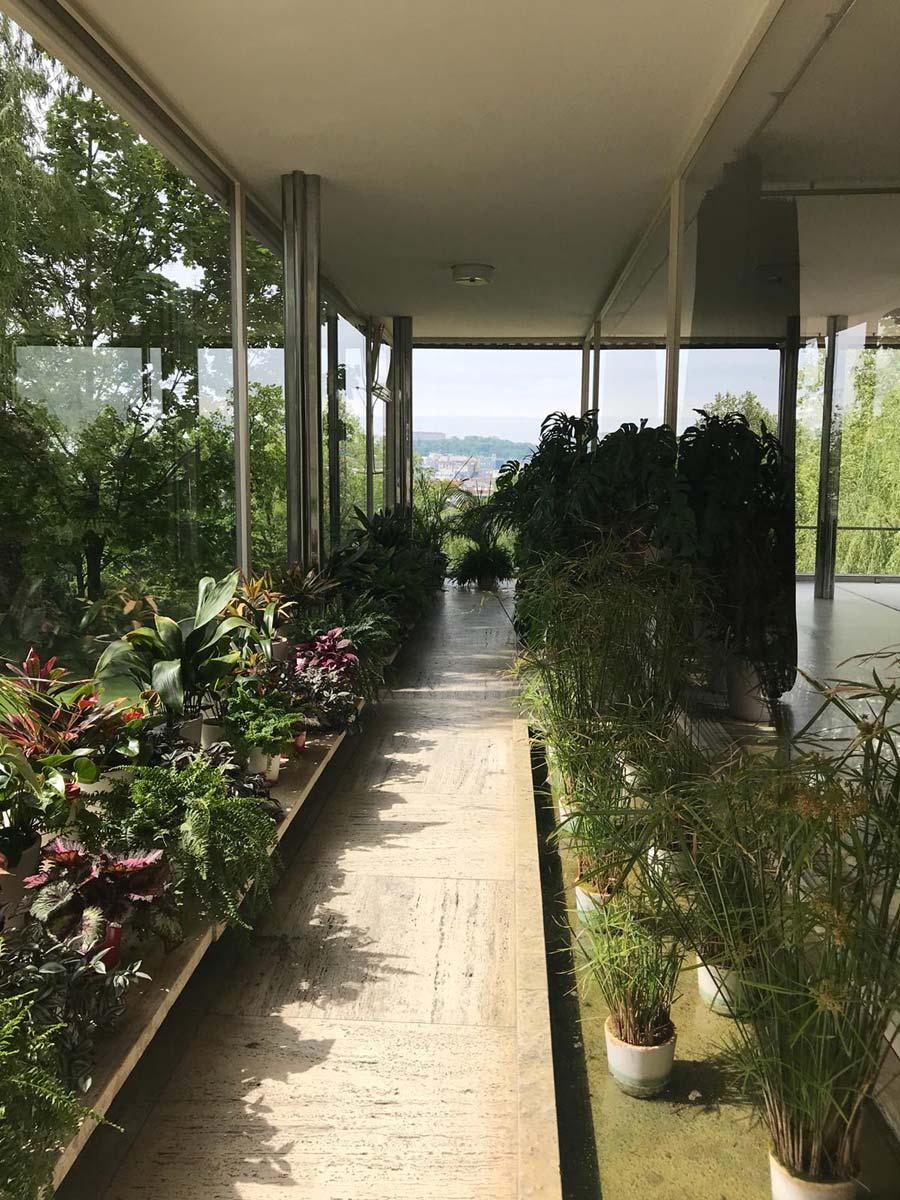 Blick in den Wintergarten der Bauhaus-Villa Tugendhat in Brünn